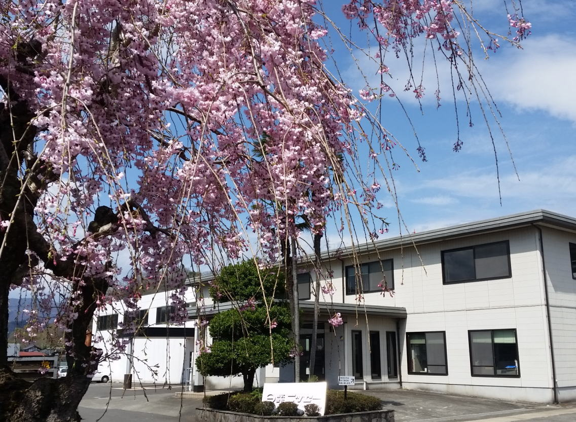 Nissei head office in spring